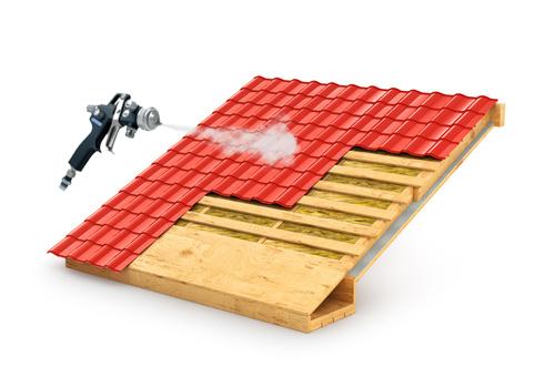 Dallau couvreur toulouse assure le traitement efficace for Carbonyle traitement du bois