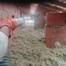 Isolation des combles en laine de verre soufflée Ramonville Saint Agne - Dallau artisan couvreur 31